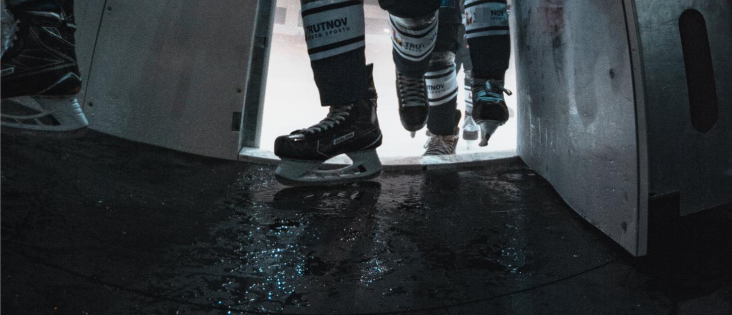 Schlittschuhe für Eishockey und Freestyle